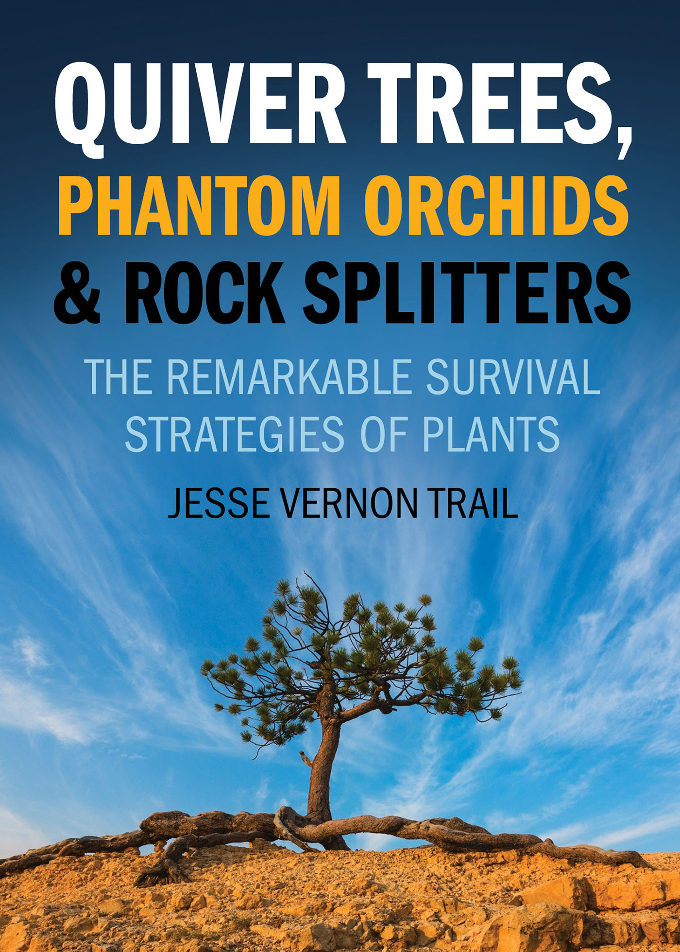 Quiver Trees, Phantom Orchids and Rock Splitters